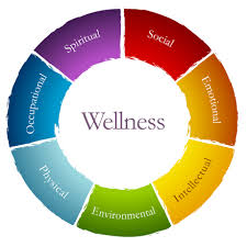 What is Social Wellness
